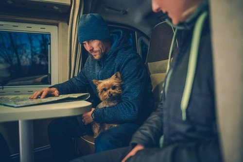 rvs and pets, RVs & Pets: What to Pack for Your Pup