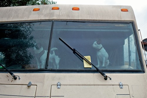 RV windshield